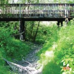 The Mill Creek and the Valley Line - An opportunity we shouldn't pass up